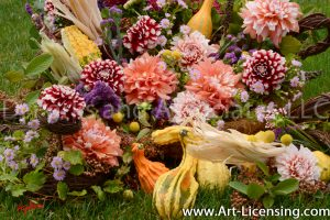 0086S-Dahlias and Pumpkins
