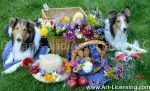 1571S-Flower Picnic with Sheltie dogs
