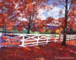 Vermont Fence