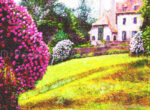Gardens of Rhododendrons
