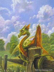 North Eastern Field Dragon