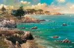 Northern California-Along The Coast