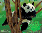 Panda in a Tree