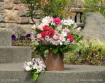 00009-Alstroemeria- Carnation