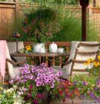 00015-Petunia Flowers Tea Time