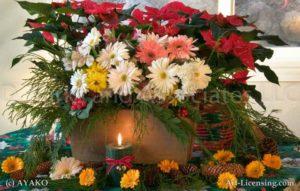 00022-Christmas Poinsettia, Garbera, Candle