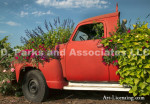 00126-Sanguna and Flowers-Red Truck