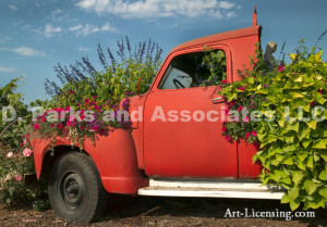 00126-Sanguna and Flowers on Orange Truck