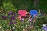 00181-Iris Flower Garden-Pink and Blue Bench