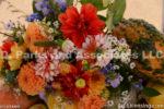 0479-Dahlia Bouquet