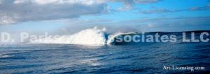 TPO Wave 2