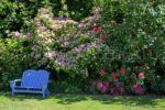 3759-Blue Bench in The Garden