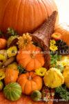 4194-Fall-Mums-Pumpkins