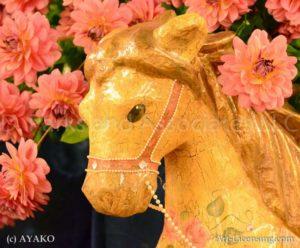 6526-Orange Dahlia-Wooden Horse
