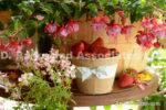 7303-Fuchsia-Strawberry