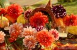 7447 Dahlia Pumpkin Autumn