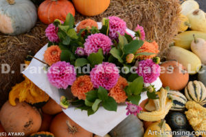 9608-Dahlia Bouquet-Pumpkins