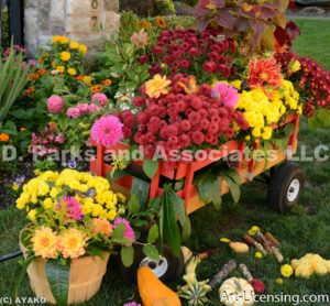 96730-Autumn Flowrs in the Wagon