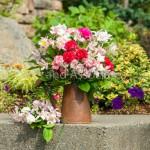 Carnation Arrangements
