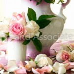 White and Pink Roses with Vase