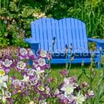 Blue Bench in Spring Garden