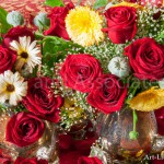 Roses and Garberas