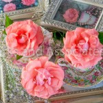 Pink Roses on Tray