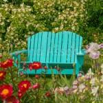 Blue Chair in Spring Garden