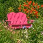 Pink Chair in Spring Garden