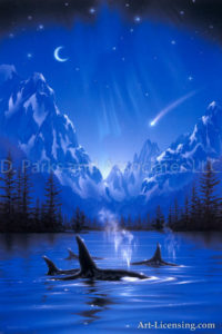 Killer Whale - Moonlight Night Journey