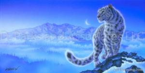 Leopard--Beginning