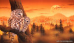 Owl - Parent and Child 2