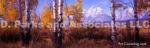 Tetons Wyoming-Autumn