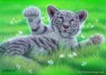 Tiger - Bed of Grass