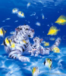 Tiger - Mother Ocean 2