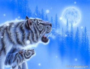 Tiger - Mother's Bosom