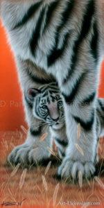 Tiger - Shy