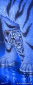 Tiger - Shy 2