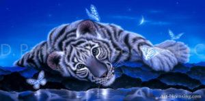 Tiger - White Baby Tiger 3