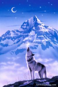Wolf - Song of Alaska