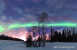 Alaska Aurora 1 (101)