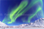 Alaska Aurora 1 (113)
