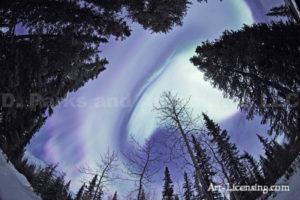 Alaska Aurora 1 (124)