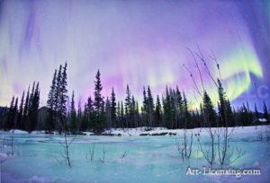 Alaska Aurora 1 (126)