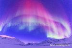 Alaska Aurora 1 (159)