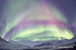Alaska Aurora 1 (17)