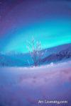 Alaska Aurora 1 (175)