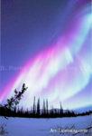Alaska Aurora 1 (187)