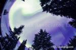 Alaska Aurora 1 (19)