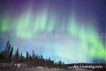 Alaska Aurora 1 (39)